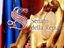 Riordino carriere: Atto del Governo n. 35, schema di decreto