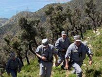 Cosa controlla la forestale