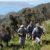 Polemiche su rinnovo del contratto dei lavoratori forestali