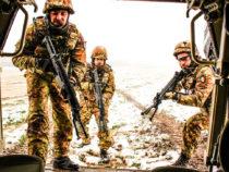 Brigata Pinerolo in addestramento