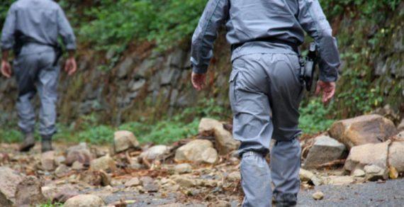 Riforma Corpo Forestale: un fallimento