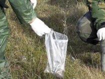 Collaborazione italiana e serba su inchiesta uranio impoverito