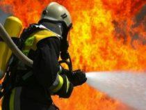 Prevenzione e sicurezza: Vigili del fuoco e sicurezza
