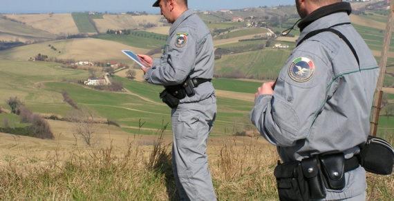Politica: Ricostituzione del Corpo forestale dello Stato