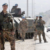Difesa: Il punto sul ritiro dell'Italia dall'Afghanistan