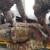 Grosseto: Terminato il 56° corso soccorritori militari