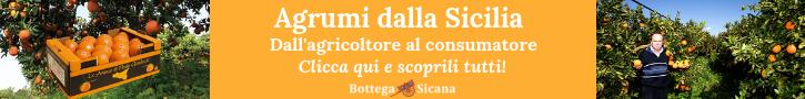 Bottega Sicana