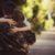 Diritto militare: Il ricongiungimento familiare in ambito militare