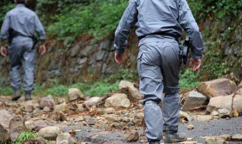 Corpo Forestale dello Stato: Comitato europeo, violati i diritti sociali dei dipendenti