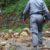 """Politica: Proposta di legge sui """"forestali"""""""