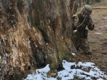 Esercito: Concluso Addestramento Soldati dell'85° RAV