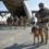 Missioni estero: Quelle verità scomode sulle missioni in Iraq e Afghanistan