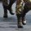 UN IMPEGNO IMPONENTE PER I MILITARI. PER QUESTO PERIODO DI FERRAGOSTO SONO 13.000 i militari impegnati nelle missioni in Italia e all'estero