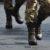 Carriera militare: Tra i giovani l'Esercito è il più amato
