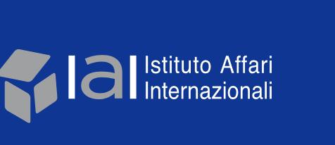 Il rapporto dello IAI sul futuro caccia europeo per l'Italia