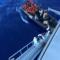 Politica: Libia, adesso tutti chiedono il ripristino della missione Sophia
