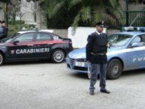 Progetto: Carabinieri e Polizia di Stato insieme contro la violenza