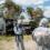 Sassari: Brigata Sassari in esercitazione con i Vigili del Fuoco