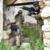 Esercito: Duro addestramento dei Bersaglieri del 6° Reggimento di Trapani