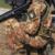 Riscatto servizio militare dopo pensionamento