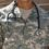 """Covid-19: Ortis (M5S), """"Saranno reclutate 400 figure di personale sanitario militare"""""""