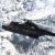Aeronautica Militare: 1ª Brigata Aerea Operazioni Speciali