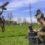 Ambiente: Difesa, gli occhi dell'Esercito Italiano sulla Terra dei Fuochi