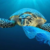 Ambiente: Marina Militare e UNIBA insieme per salvare il mare dalla plastica