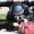 Polizia di Stato: Selezione personale 25mo Corso artificierie IEDD