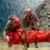 """Conclusa l'esercitazione  di soccorso alpino militare """"Altius One"""""""