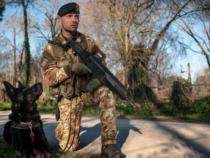 Cani con le stellette: L'ENPA scrive al Ministro della Difesa Lorenzo Guerini