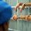 Polizia penitenziaria: Situazione grave nelle varie carceri sparse sul territorio nazionale