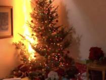 """Alberi di Natale: Vigili del fuoco, """"Spegnete le lucine di notte e prima di uscire"""""""