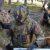 Lettonia: Esercitazione multinazionale Steele Quench