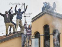 Cronaca: Rivolta e morti nelle carceri