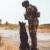 Giornata internazionale del cane: Foto dolcissime di Forze Armate e Polizia ai colleghi a 4 zampe