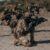 """Esercitazione Flooded 1^/20: Un giorno al poligono con il 183mo Reggimento paracadutisti """"Nembo"""""""