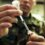 Emergenza Covid-19: La corsa a vaccinare i militari