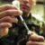 Vaccinazione Covid-19: Stop di AstraZeneca per militari e forze dell'ordine