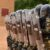 Difesa: Lo strumento militare e l'arma dei Carabinieri