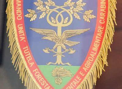 Intervista al generale Antonio Marzo, nuovo comandante del Comando Unità Forestali Ambientali e Agroalimentari dei Carabinieri